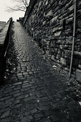 The Snicket (Mr_Pudd) Tags: lamppost snicket nikond750 nikon silverhalideeffect sets cobbles halifax deanclough inthestyleofbillbrandt afsvrzoomnikkor2485mmf3545gifed
