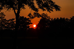Sunset (betadecay2000) Tags: sunset sonnenuntergang sonnenuntergänge sonne rotrood red rouge baum bäume sol sun dülmen germany dutisland deutschland niemcy himmel sky natur natuur nature deutsch german duits wetter weer meteo weather abendstimmung