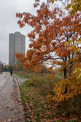 Heading Home (Jocey K) Tags: sonydscrx100m6 triptocanada ontario canada autumn trees walkway buildings architecture clouds sky autumncolours leaves people