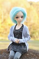 Fall Leaves (AluminumDryad) Tags: fairyland minifee mnf flam eventhead bluehair msd abjd balljointeddoll doll resin autumn