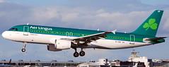 Airbus A-320 EI-DEF (707-348C) Tags: dublinairport dublin eidw passenger airliner jetliner airbus airbusa320 eidef shamrock a320 ireland dub aerlingus lingus ein 2011