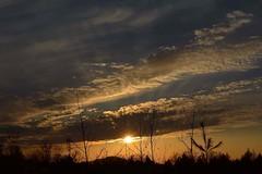 2019_0329Roadside-Sunset0001 (maineman152 (Lou)) Tags: sunset springsunset sunsetsky nature naturephoto naturephotography landscape landscapephoto landscapephotography march maine