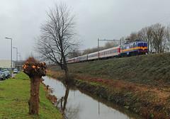 RXP 1251 met trein 70452 (kevinpiket) Tags: railexperts rxp vervoerder 1251 ns1200 nederlandsespoorwegen elektrischelocomotief elok locomotief baldwin werkspoor rijtuigen reizigerstrein leegmaterieel skitrein wintersporttrein alpenexpress spoorlijn spoordijk railway railroad train zuge eisenbahn rotterdam zuidholland nederland niederlande netherlands trein canon 80d
