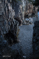 Caves At Ravens Nest_27A8084 (Alfred J. Lockwood Photography) Tags: alfredjlockwood nature landscape shore shoreline cave cliff rock ravensnest acadianationalpark twilight evening maine pebbles autumn