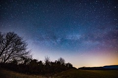 First milky way in 2019 (clemensgilles) Tags: availablelight voielactée milchstrase milkyway stargazing starlight trees winter longexposure astrophotography astrophotographers astrofotographie night nachtfotografie deutschland eifel germany beautiful