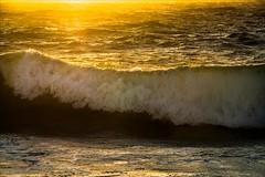 P2233561 Floreat City Beach (Dave Curtis) Tags: perth wave sunset australia em5 omd olympus places wa westernaustralia