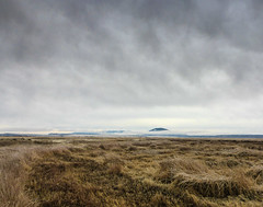 Refuge in Winter (ex_magician) Tags: winter statelineroad northerncalifornia moik photo photos picture pictures image lightroom adobe adobelightroom interesting lavabedsnationalmonument lavabeds nationalmonument tulelake california lava klamathbasinnationalwildliferefuge wildliferefuge