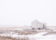 Whiteout barn (Dan Fleury Photos) Tags: bright highkey napanee ontario canada cold snowstorm snow winter storm whiteout rural farm barn cans2s