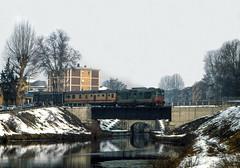 FS D 343 Pavia Porta Garibaldi 25/01/1987 (stefano.trionfini) Tags: train treni bahn zug diesel fs d343 pavia lombardia italia italy