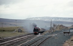 THAMES CLYDE IN WINTER (Malvern Firebrand) Tags: lms 462 8p 46229 duchess hamilton ribblehead quarry 20282 sc settle carlisle yorkshire railtour cmp cme thamesclyde express steam smoke winter snow cold siding vehicles transport loco locomotive passenger coaches 1982 1980s special maroon br pacific