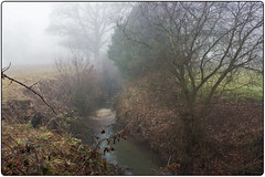 009 (Barbara Ringland) Tags: mist weather countryside stream bracken