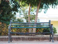 Cuba Holguín © Kuba © (hn.) Tags: cu cub caribbean groseantillen holguin holguinprovince karibik parquesanjosé republicadecuba republik asiento bank bench copyright copyrighted cuba heiconeumeyer kuba provinciadeholguin seat seating sit sitzen tp201901cuba holguín