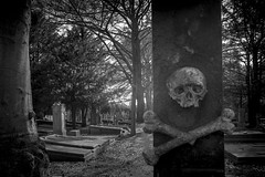 come on in (stevefge) Tags: 2019 cemetary nijmegen cemetery skull graveyard graves blackandwhite bw zw zwartwit monochrome reflectyourworld spooky nederland netherlands nl nikon