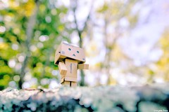 Some old-fashioned (gusdiaz) Tags: nature bokeh dof fuji fujifilm colorful danbo cute winter spring invierno primavera colorido naturaleza bokehlicious xt2 16mm