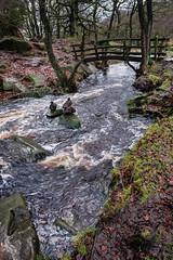 Padley Gorge (Rupert Brun) Tags: hope valley padley gorge 2018 derbyshire grindleford winter landart balancedstones