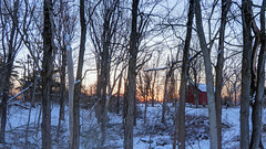 Dawn Through the Trees (blazer8696) Tags: 2019 brookfield ct connecticut ecw hdr img380678natural obtusehill t2019 usa unitedstates winbbede dawn sunrise
