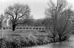 L'Eure et l'aqueduc de l'Avre (Philippe_28) Tags: 28 montreuil eureetloir eure avre rivière river nature 24x36 argentique analogue camera photography film 135 aqueduc