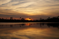 ...surreal sunset (Jim Atkins Sr) Tags: sunset spectacularsunsetsandsunrises cloudsstormssunsetssunrises clouds cloudscape northcarolina northwestcreek fairfieldharbour sony sonyphotographing sonya58