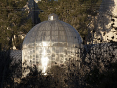 Greenhouse at the Botanical Garden Jerusalem (zeevveez) Tags: זאבברקן zeevveez zeevbarkan canon botanicalgarden