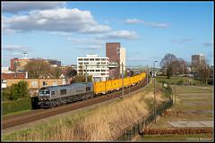 RheinCargo DE61+Bauertrein, Hengelo, 24-3-2019 (Allard Bezoen) Tags: trein train zug lok diesellok class class66 66 rheincargo rc de61 bauer bauertrein basel veendam hengelo hazemijer dieselloc locomotief locomotive lokomotieve goederen goederentrein