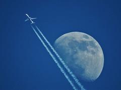 Ryanair B-737-8AS EI-DPC Morzine (74 Haute-Savoie) 16-03-19a (mugicalin) Tags: morzine hautesavoie 74 2019 fujifilm fujifilmfinepix fujifilmfinepixs1 s1 finepixs1 finepix ryanair b737 boeing737 737 b7378as eidpc inflight inflightspotting ciel sky himmel hemel cielo raj moon lune lalune laluna luna mond mjesec avion aircraft zoom bleuetblanc blancetbleu blueandwhite whiteandblue 10fav