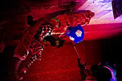 mad clown (Mau Silerio) Tags: underwater photography harlequin arlequin circus surreal surrealism surrealisme performance sony alpha meikon mask