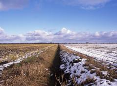 Plaatselijke sneeuwbuien? (Ernst-Jan de Vries) Tags: