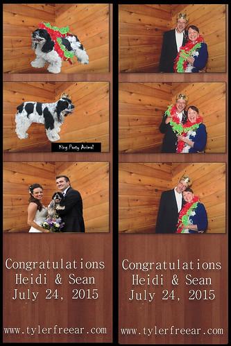 Fun Photo Editing image