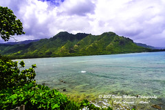 OAHU-HAWAII_1D50897-01 (Donna Molinari Photography) Tags: sanjose ca usa